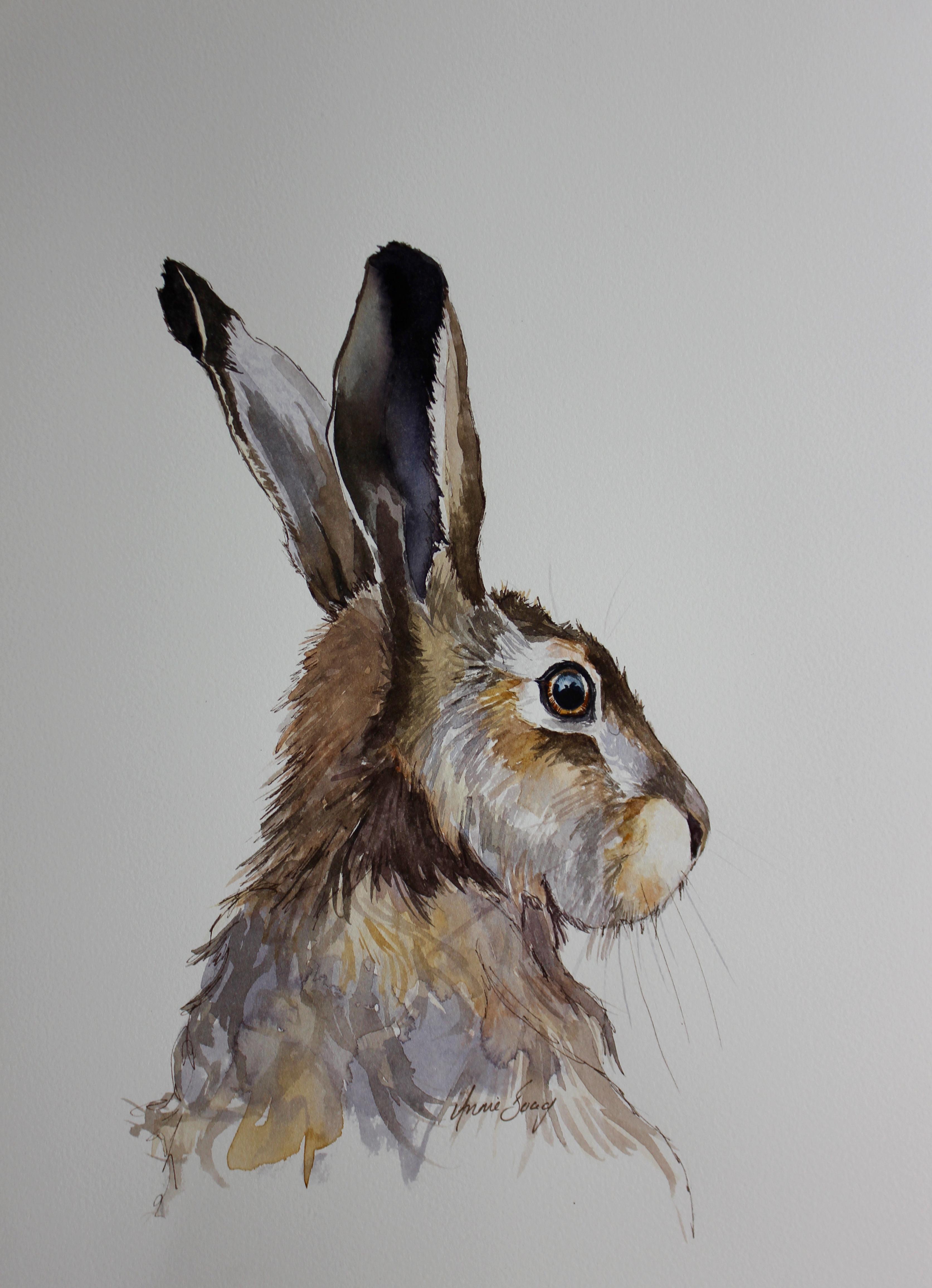 Hare 17/1