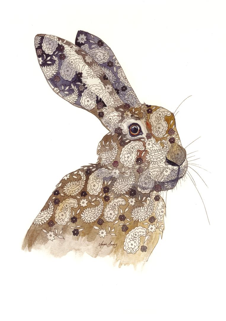 Paisley Hare III
