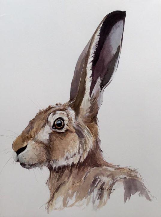 Hare VI