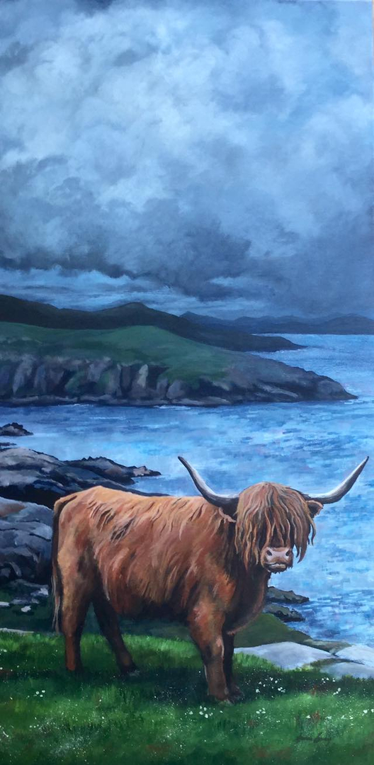 Highland cow, impending storm